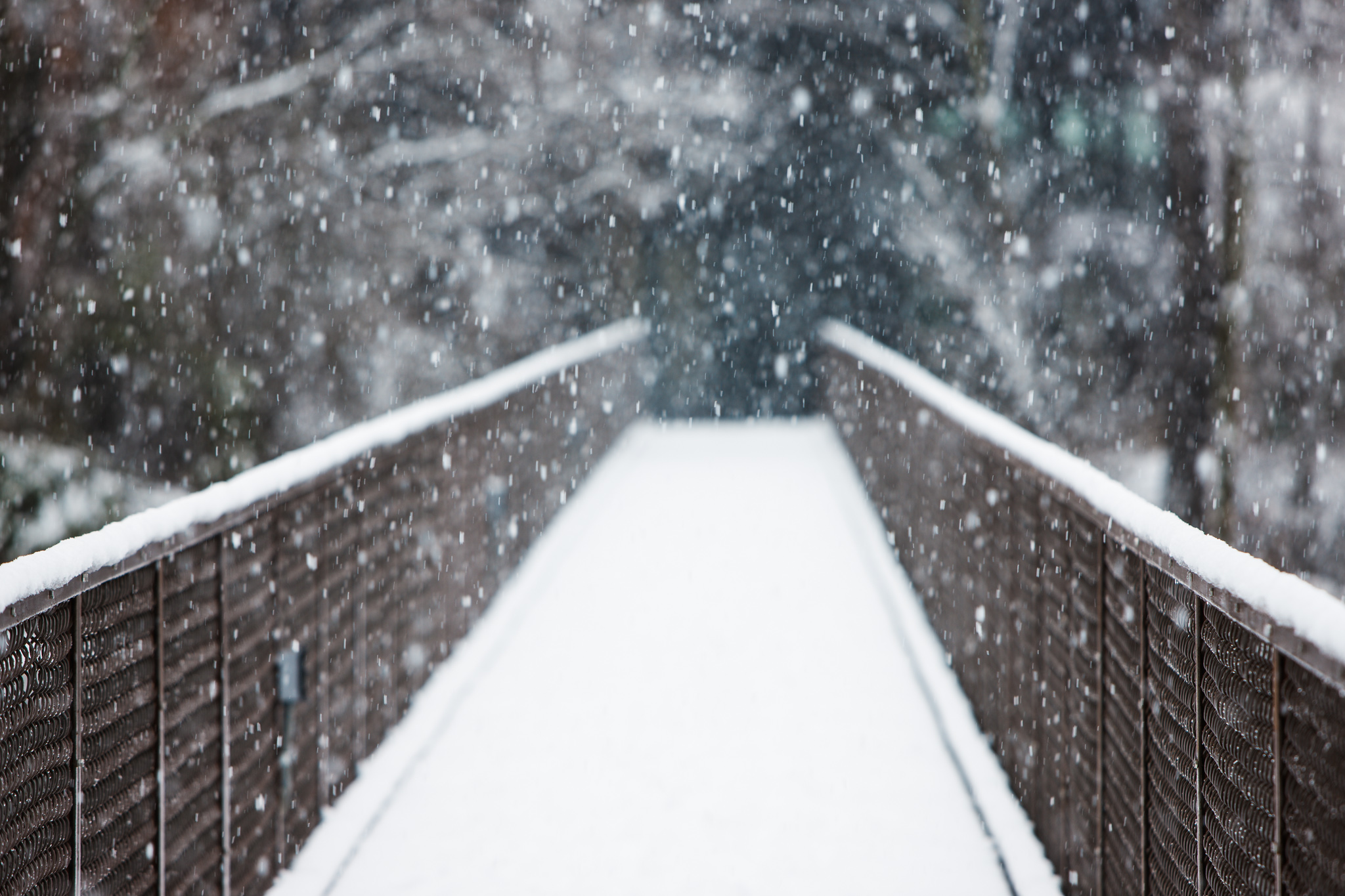 Bridge Into Snow