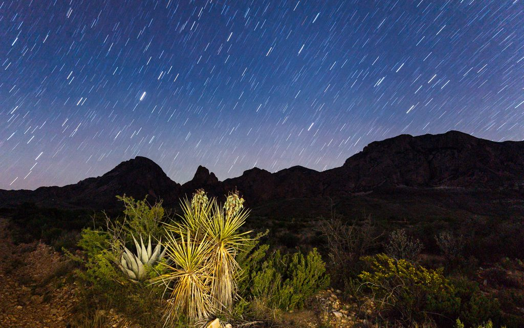 Star Trail over the Chisos