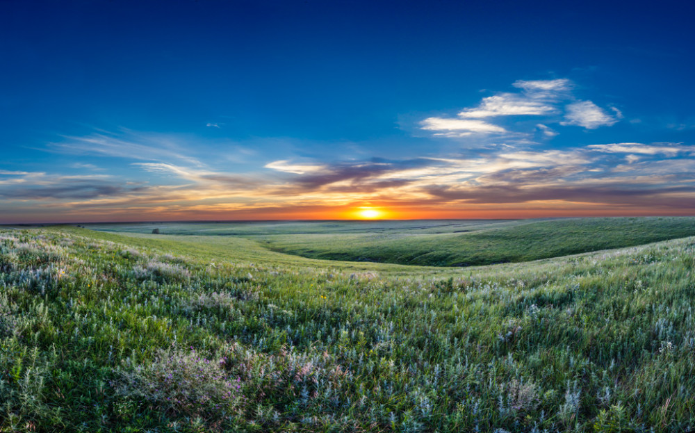 Tallgrass prairie summer grasses and rolling hills, Flint Hills, Kansas, USA.