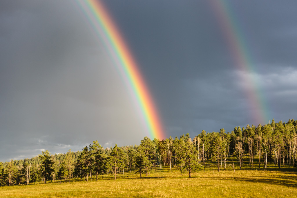 Double rainbow above forest near Canadian River, Vermejo Park Ranch, New Mexico, USA.