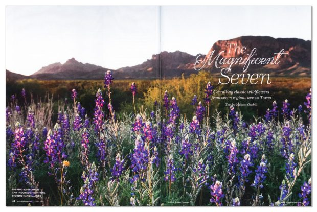 Two page spread in April 2016 issue of Texas Highways magazine. Image is Big Bend bluebonnets and the Chisos Mountains, Big Bend National Park, Texas, USA by Sean Fitzgerald.