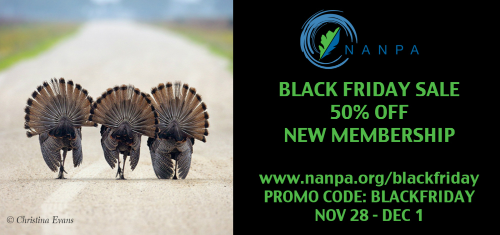 NANPA Black Friday Facebook