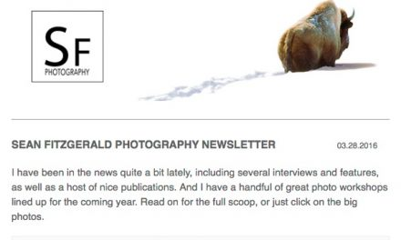 My Newsletter is Out!