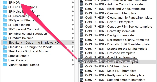 Right-click preset, then Open in Finder. Duplicate and drag preset to the new folder.