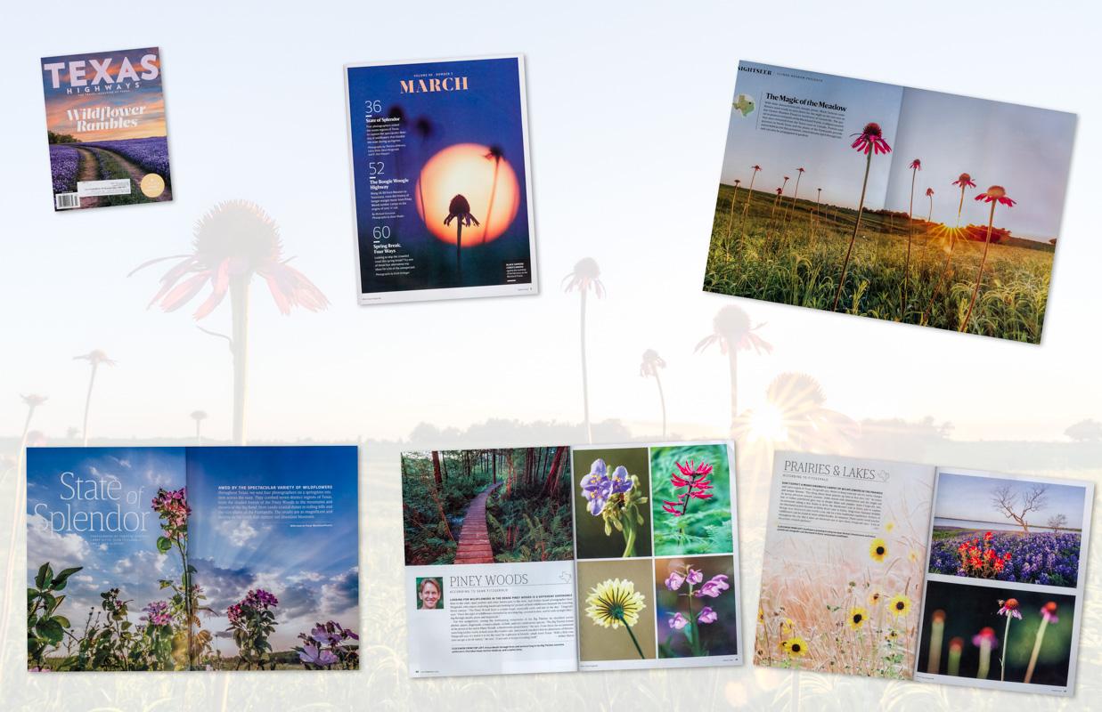 Wildflower Assignment for Texas Highways Magazine