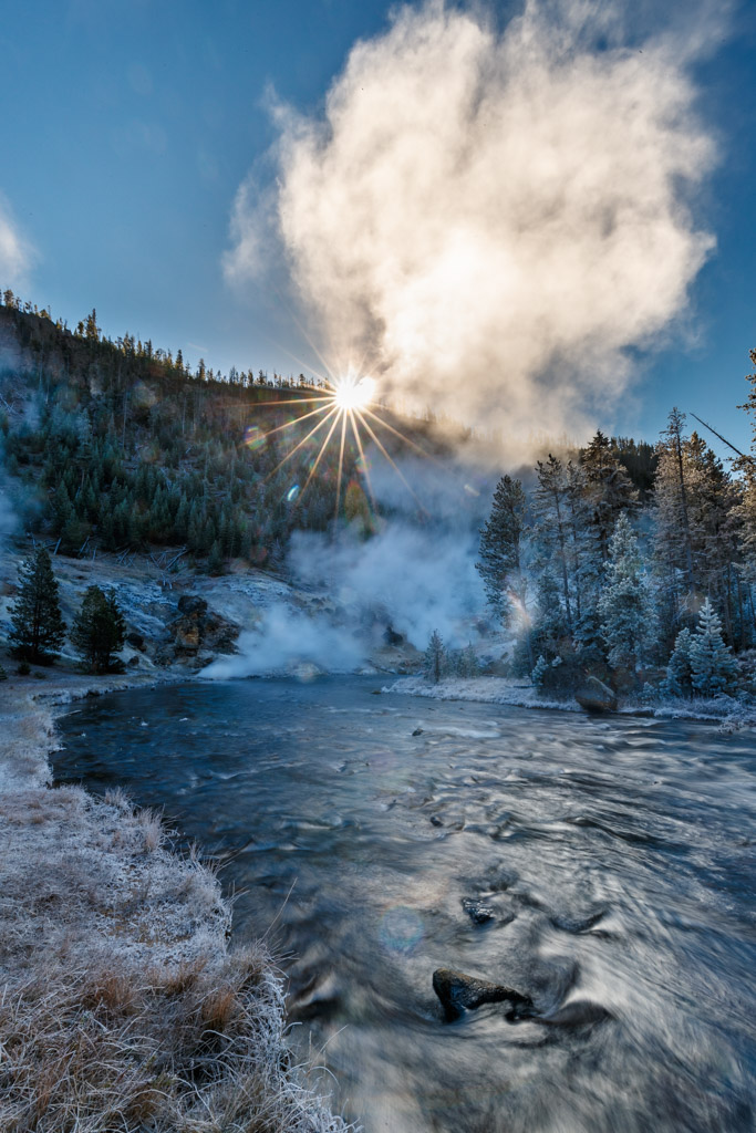 Ice and morning mist on trees along Gibbon River,Yellowstone National Park, Wyoming, USA.