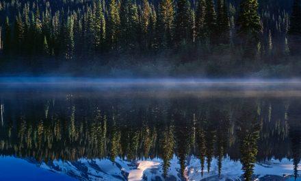 Photo of the Day – Mt. Rainier