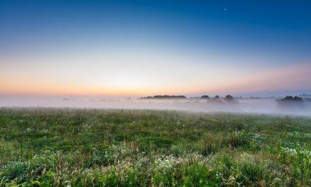 Moon, Mist, Prairie