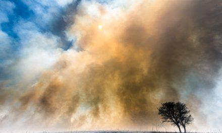 Clymer Meadow Fire