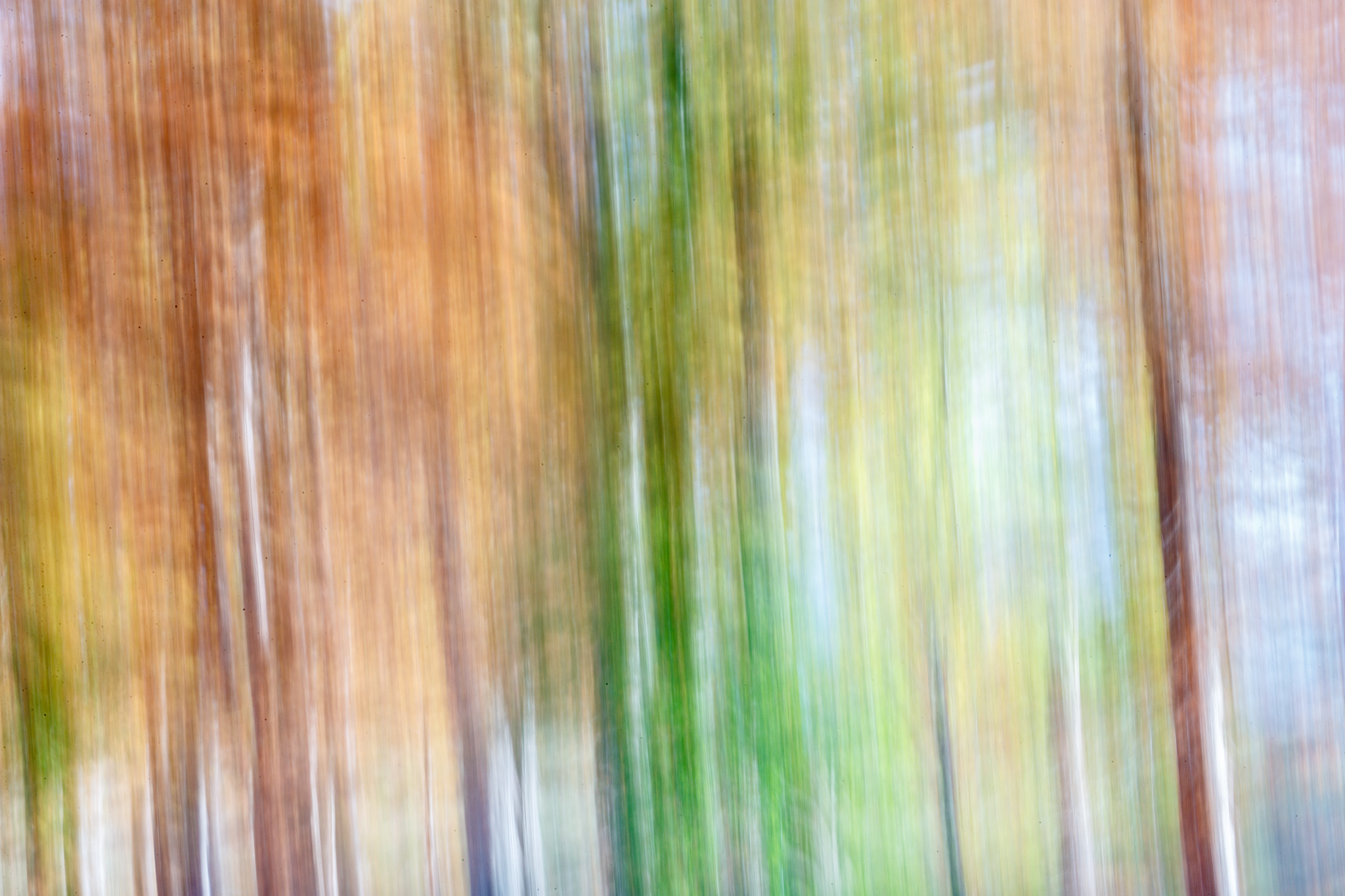 5 Second Abstract