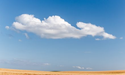 Cloud and Wheat