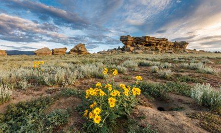 Castle Rock – Vermejo Park Ranch