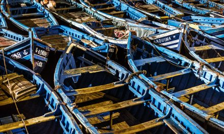 Working the Blue Boats