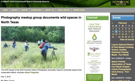 Green Source DFW Meetup Interview