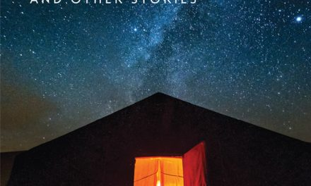Book Cover for Night in Erg Chebbi and Other Stories