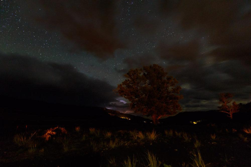 Tree framed by Lightning storm and night sky, Vermejo Park Ranch, New Mexico, USA.